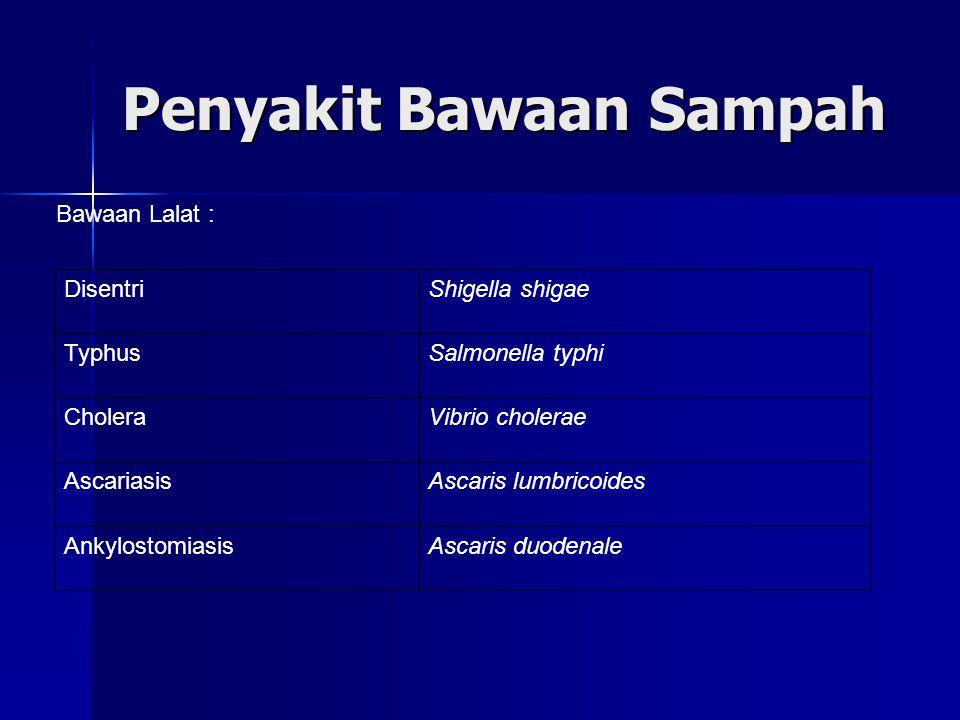 Penyakit Bawaan Sampah DisentriShigella shigae TyphusSalmonella typhi CholeraVibrio cholerae AscariasisAscaris lumbricoides AnkylostomiasisAscaris duodenale Bawaan Lalat :