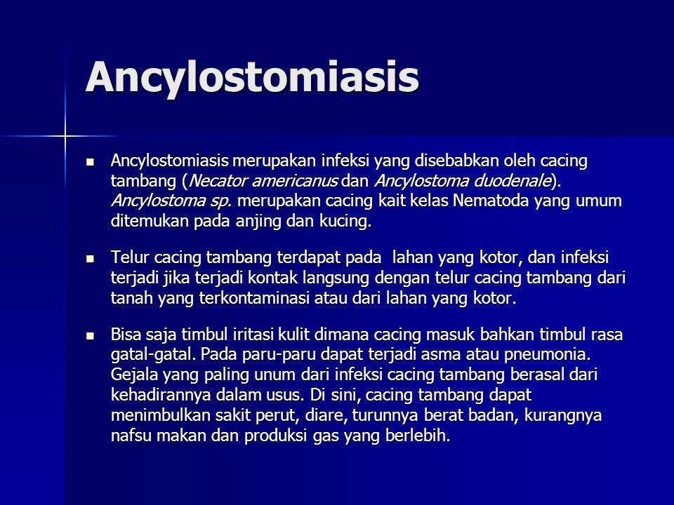 Ancylostomiasis Ancylostomiasis merupakan infeksi yang disebabkan oleh cacing tambang (Necator americanus dan Ancylostoma duodenale).