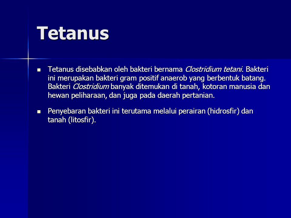Tetanus Tetanus disebabkan oleh bakteri bernama Clostridium tetani.