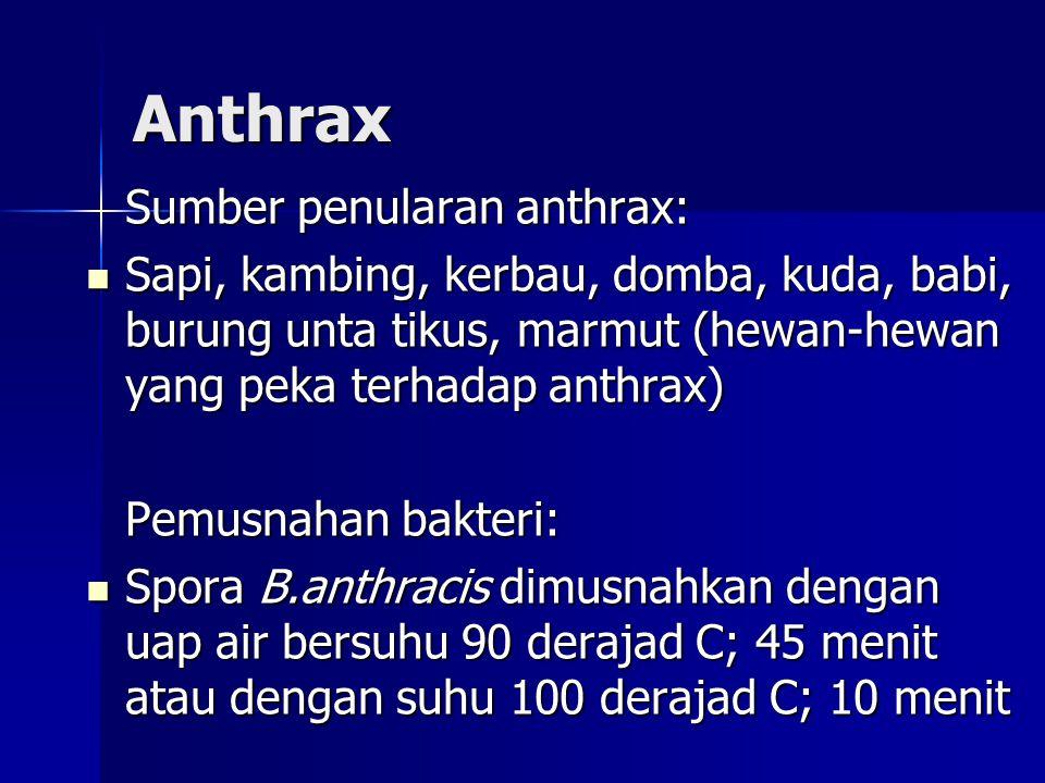Anthrax Sumber penularan anthrax: Sapi, kambing, kerbau, domba, kuda, babi, burung unta tikus, marmut (hewan-hewan yang peka terhadap anthrax) Sapi, kambing, kerbau, domba, kuda, babi, burung unta tikus, marmut (hewan-hewan yang peka terhadap anthrax) Pemusnahan bakteri: Spora B.anthracis dimusnahkan dengan uap air bersuhu 90 derajad C; 45 menit atau dengan suhu 100 derajad C; 10 menit Spora B.anthracis dimusnahkan dengan uap air bersuhu 90 derajad C; 45 menit atau dengan suhu 100 derajad C; 10 menit