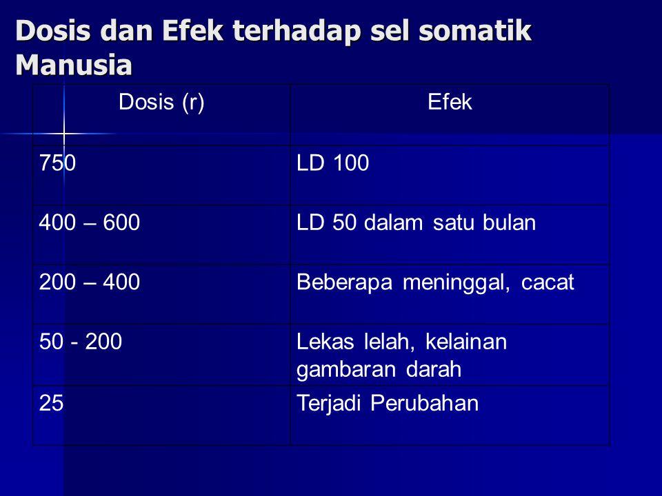 Dosis dan Efek terhadap sel somatik Manusia Dosis (r)Efek 750LD 100 400 – 600LD 50 dalam satu bulan 200 – 400Beberapa meninggal, cacat 50 - 200Lekas lelah, kelainan gambaran darah 25Terjadi Perubahan