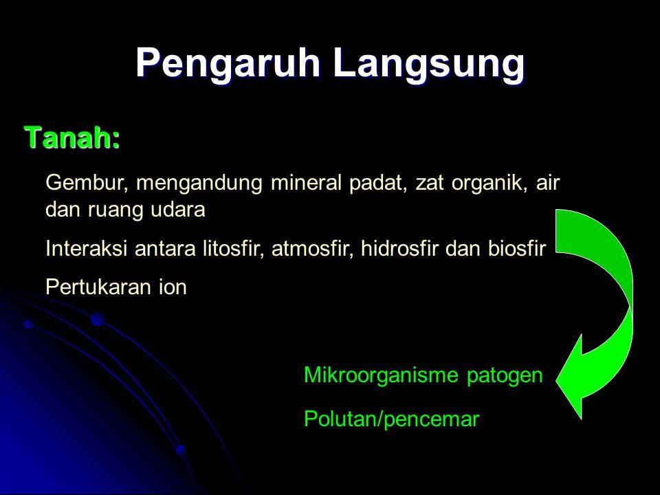 Pengaruh Langsung Tanah: Gembur, mengandung mineral padat, zat organik, air dan ruang udara Interaksi antara litosfir, atmosfir, hidrosfir dan biosfir Pertukaran ion Mikroorganisme patogen Polutan/pencemar