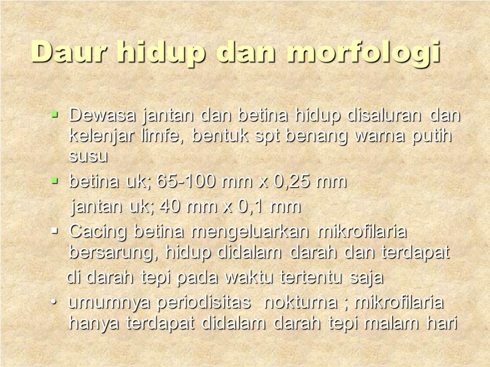 Nematoda jaringan 1.Wuchereria bancrofti Hospes ; manusia Hospes ; manusia penyakit ; filariasis bankrofti atau penyakit ; filariasis bankrofti atau w