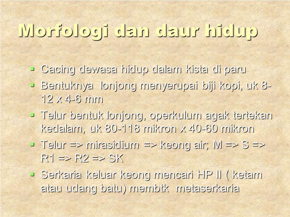 2. Paragonimus westermani  Hospes : Manusia dan binatang memakan ketam atau udang  Penyakit ; paragonimiasis  Distr ;RRC, Taiwan, Korea, Jepang, Fi