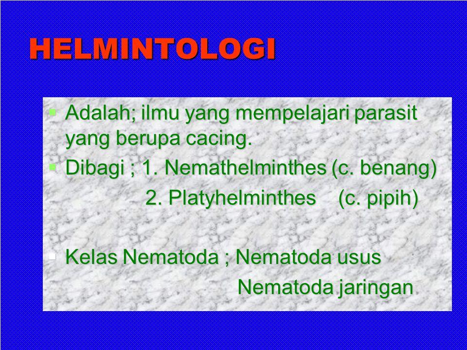 Penyakit parasit yg mrpk masalah kesekatan masyarakat di Indonesia Malaria Toksoplasmosis Penyakit cacing yang ditularkan melalui tanah Filariasis Mik