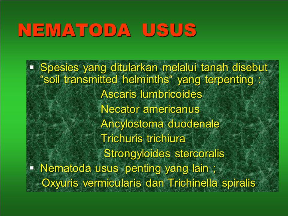 Entomologi Morfologi, daur hidup dan perilaku nyamukMorfologi, daur hidup dan perilaku nyamuk Vektor penyakit protozoaVektor penyakit protozoa Vektor