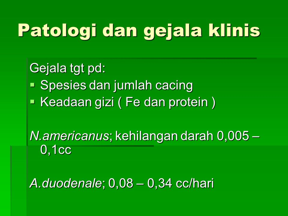 Patologi dan gejala klinis 1.Stadium larva : Bila banyak larva filariform sekaligus menembus kulit, terjadi ground itch. Perubahan pada paru biasanya