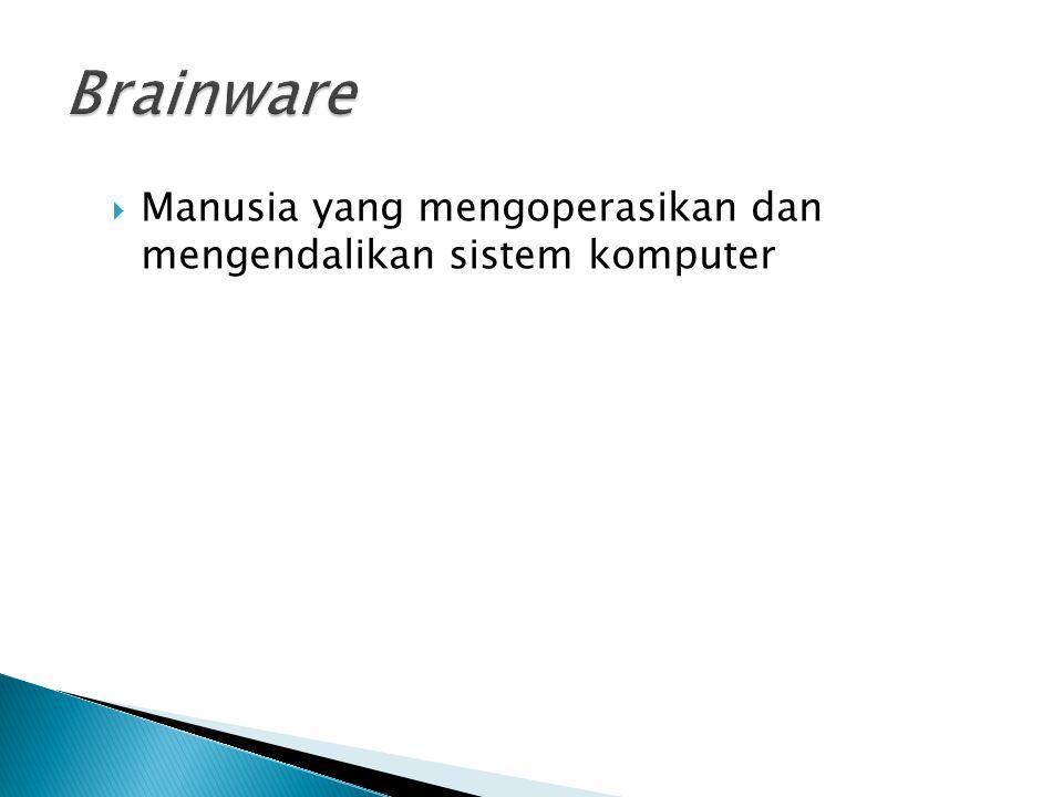 Manusia yang mengoperasikan dan mengendalikan sistem komputer