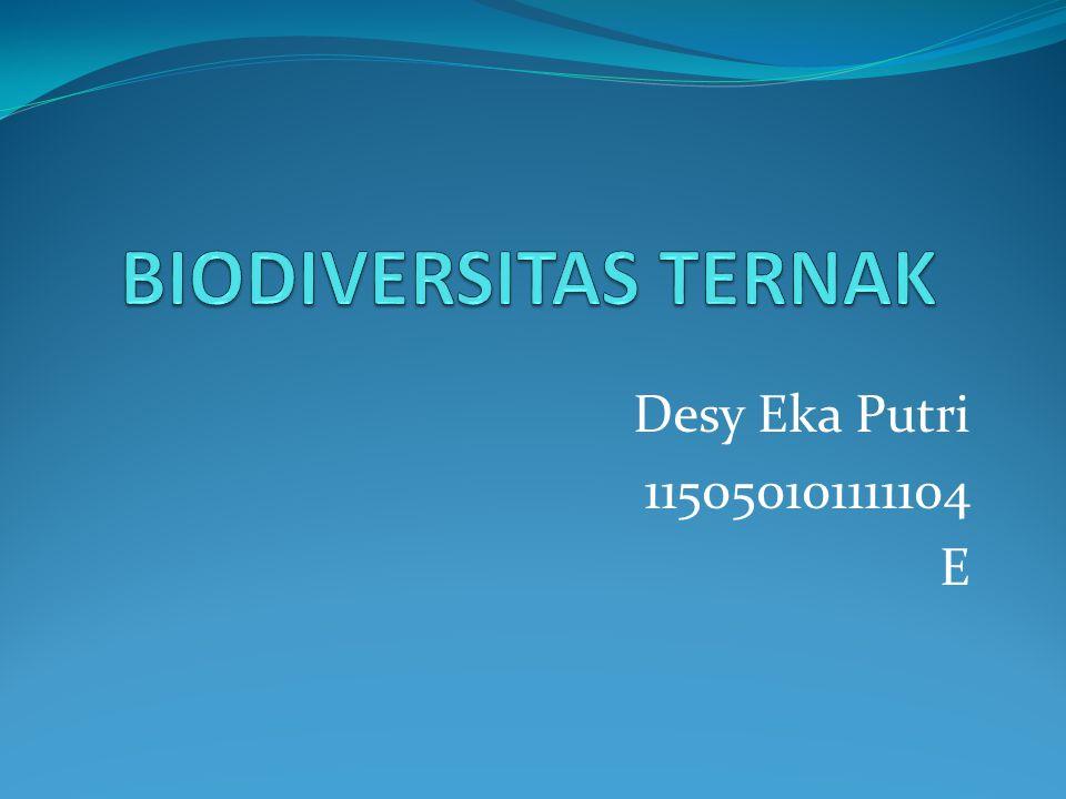 Desy Eka Putri 115050101111104 E