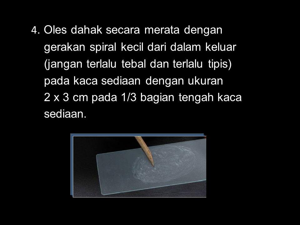 4. Oles dahak secara merata dengan gerakan spiral kecil dari dalam keluar (jangan terlalu tebal dan terlalu tipis) pada kaca sediaan dengan ukuran 2 x