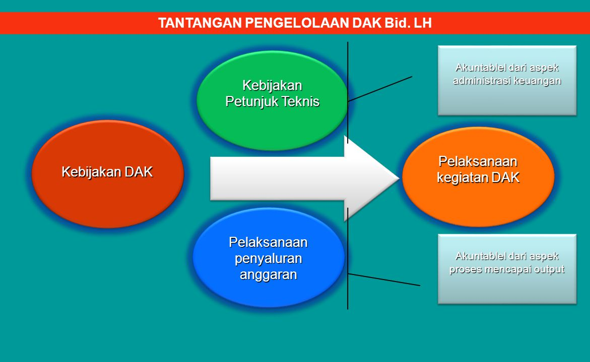 Kebijakan DAK Pelaksanaan kegiatan DAK Pelaksanaan penyaluran anggaran Kebijakan Petunjuk Teknis Akuntablel dari aspek administrasi keuangan Akuntablel dari aspek proses mencapai output TANTANGAN PENGELOLAAN DAK Bid.