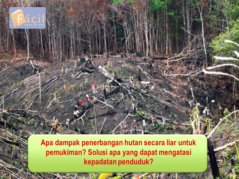 Apa dampak penerbangan hutan secara liar untuk pemukiman? Solusi apa yang dapat mengatasi kepadatan penduduk?