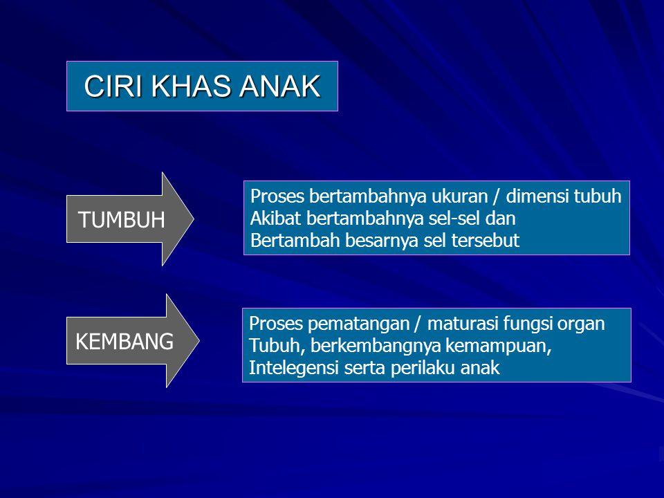 Kuesioner Masalah Mental Emosional (KMME).