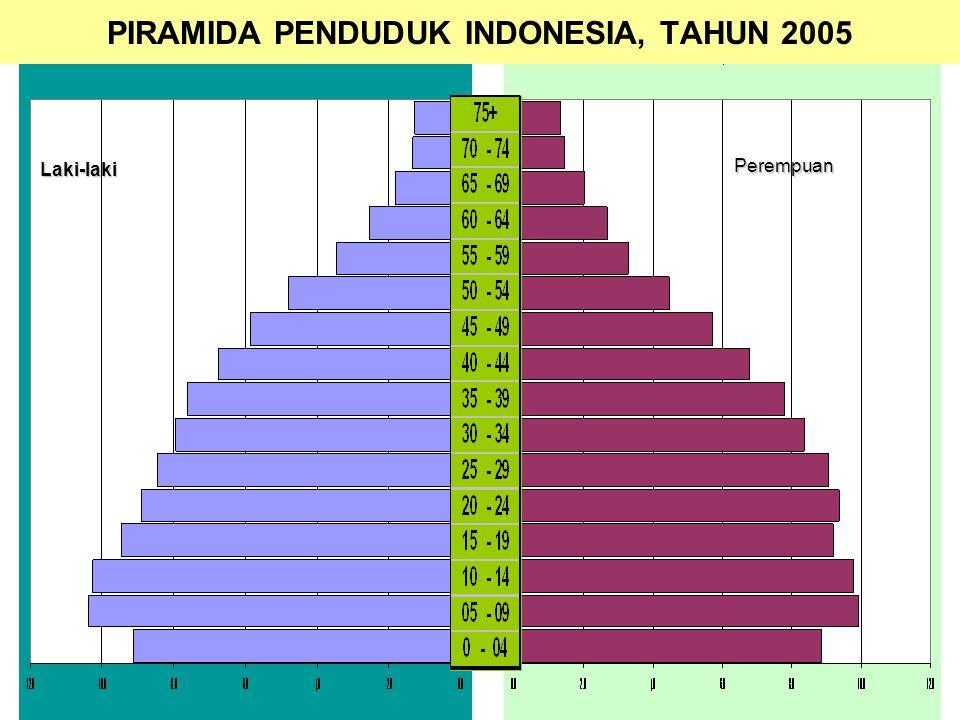 30 PIRAMIDA PENDUDUK INDONESIA, TAHUN 2005Laki-laki Perempuan