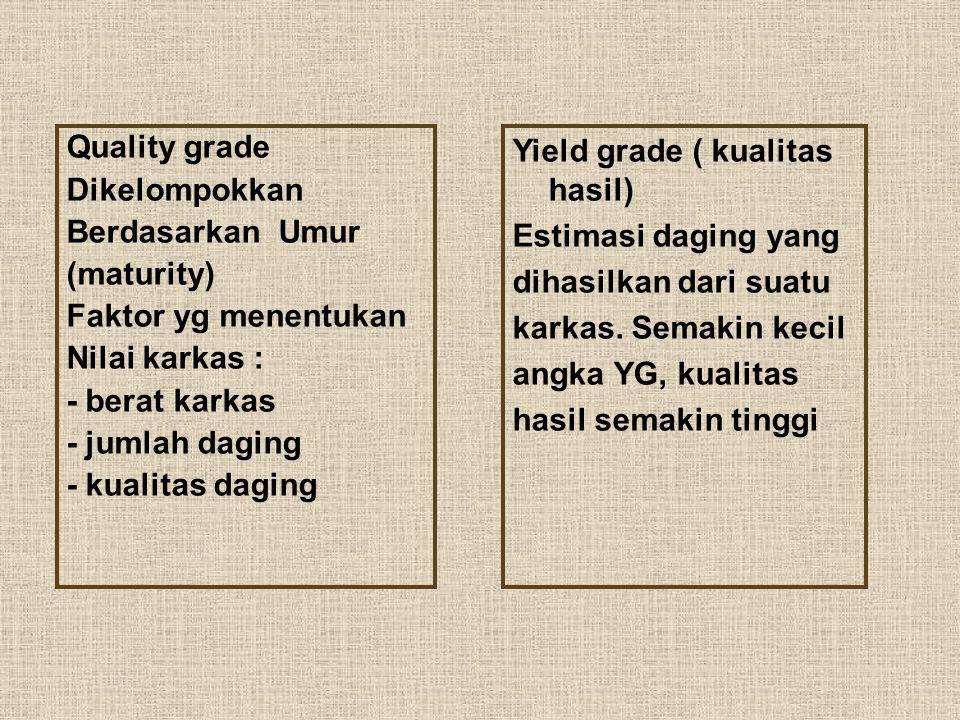 Quality grade Dikelompokkan Berdasarkan Umur (maturity) Faktor yg menentukan Nilai karkas : - berat karkas - jumlah daging - kualitas daging Yield gra
