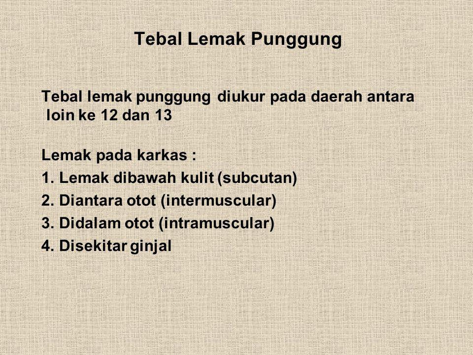 Tebal Lemak Punggung Tebal lemak punggung diukur pada daerah antara loin ke 12 dan 13 Lemak pada karkas : 1. Lemak dibawah kulit (subcutan) 2. Diantar
