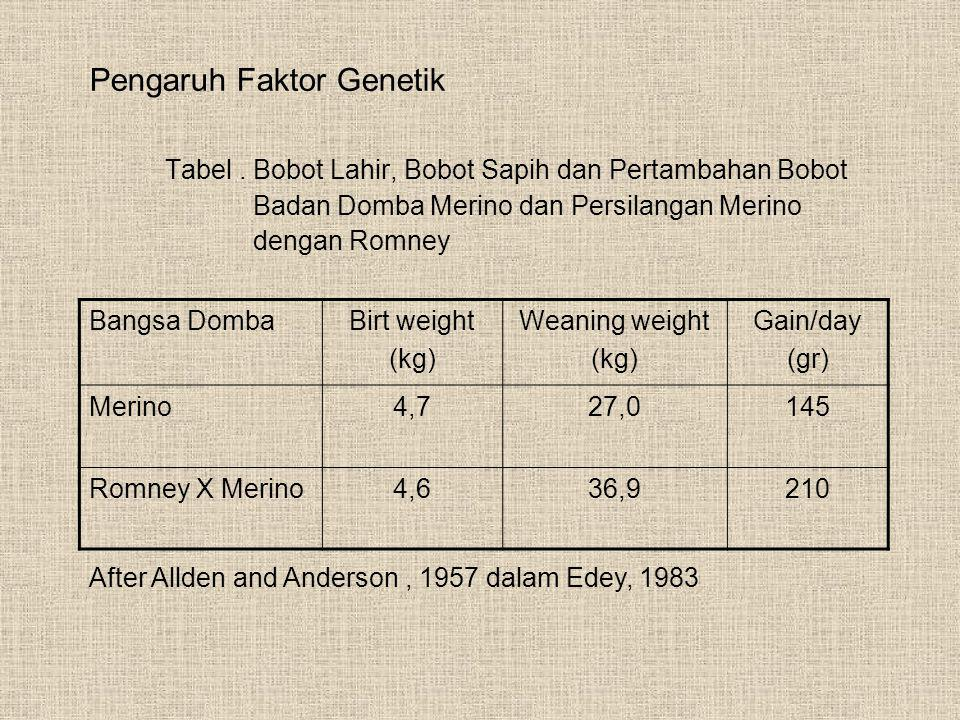 Pengaruh Faktor Genetik Tabel. Bobot Lahir, Bobot Sapih dan Pertambahan Bobot Badan Domba Merino dan Persilangan Merino dengan Romney Bangsa DombaBirt