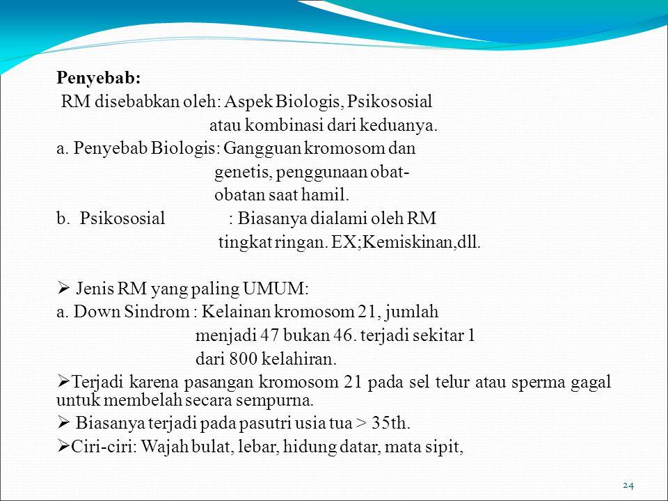 24 Penyebab: RM disebabkan oleh: Aspek Biologis, Psikososial atau kombinasi dari keduanya. a. Penyebab Biologis: Gangguan kromosom dan genetis, penggu