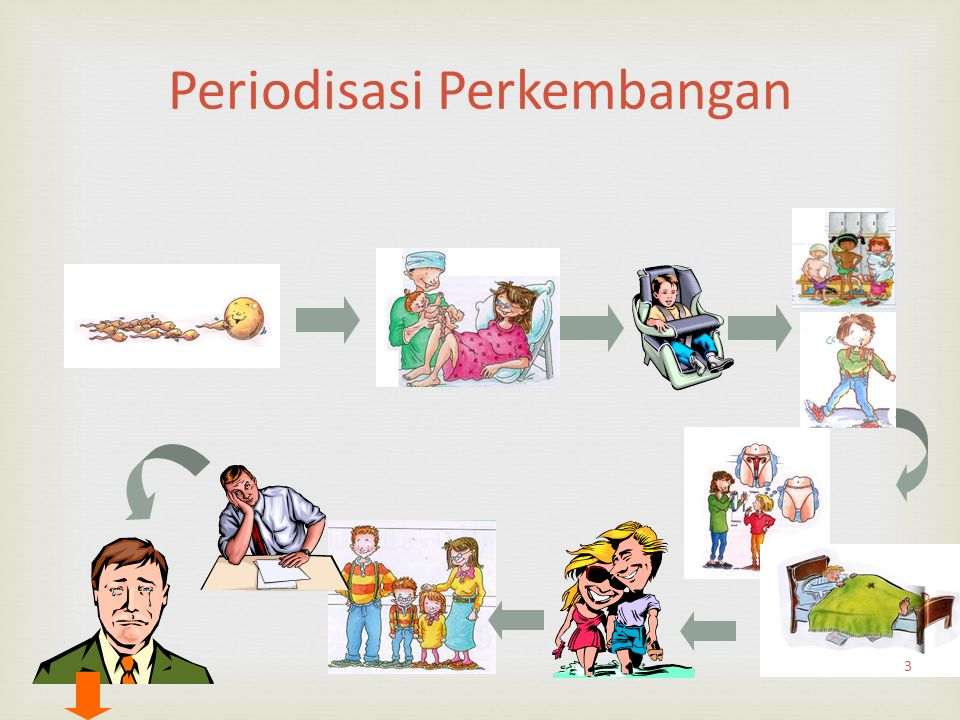 Periodisasi Perkembangan 3