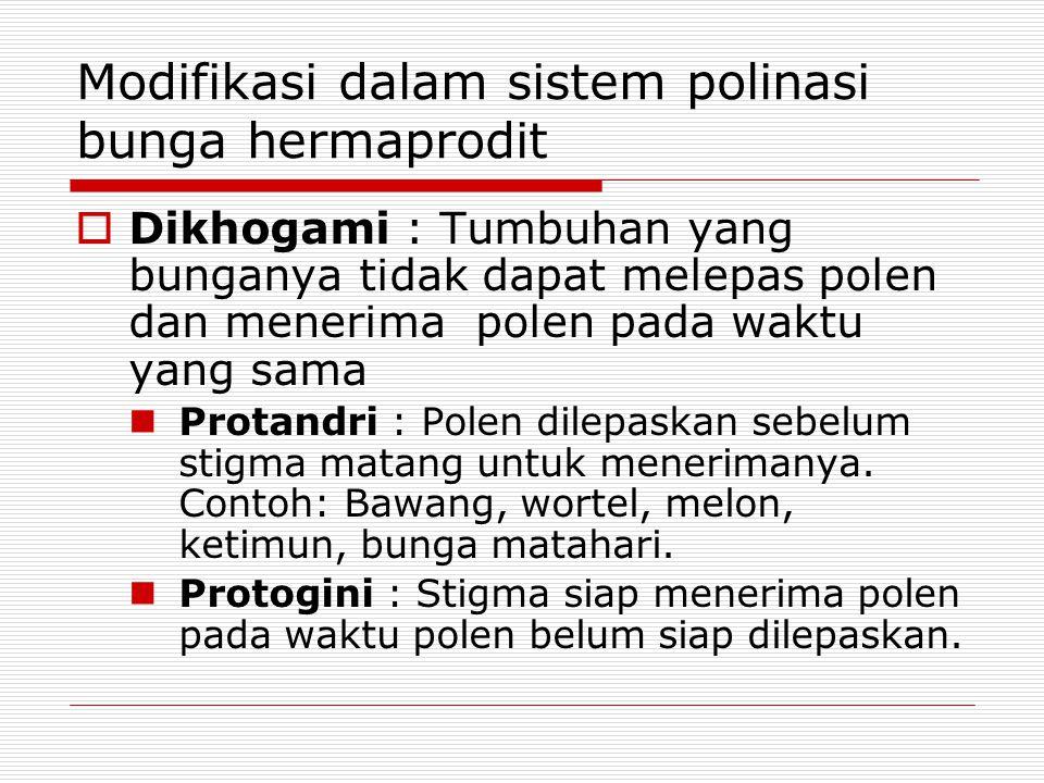 Modifikasi dalam sistem polinasi bunga hermaprodit  Dikhogami : Tumbuhan yang bunganya tidak dapat melepas polen dan menerima polen pada waktu yang s