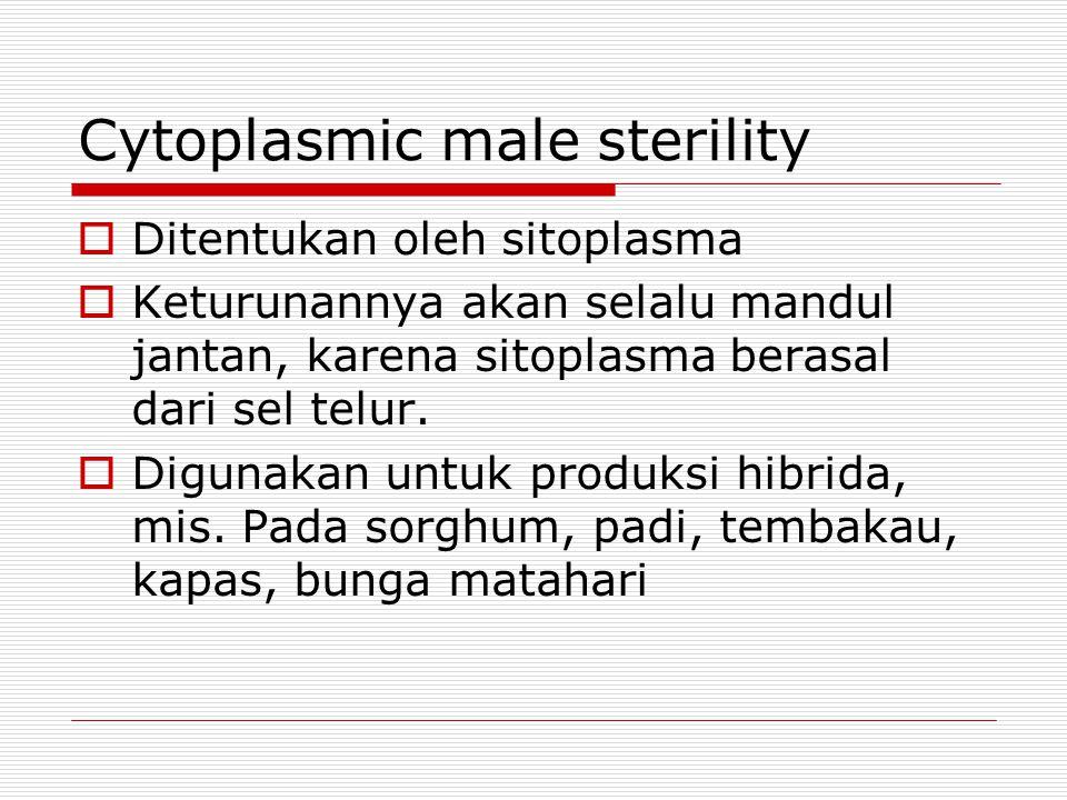 Cytoplasmic male sterility  Ditentukan oleh sitoplasma  Keturunannya akan selalu mandul jantan, karena sitoplasma berasal dari sel telur.  Digunaka