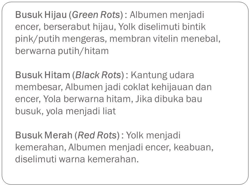 Busuk Hijau (Green Rots) : Albumen menjadi encer, berserabut hijau, Yolk diselimuti bintik pink/putih mengeras, membran vitelin menebal, berwarna puti