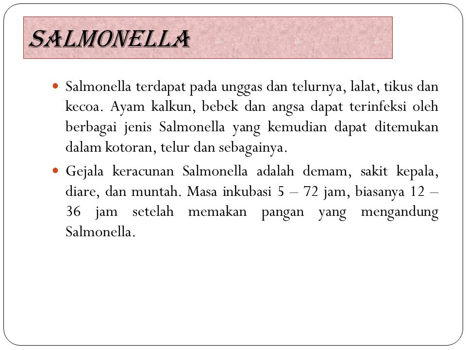 SALMONELLA Salmonella terdapat pada unggas dan telurnya, lalat, tikus dan kecoa. Ayam kalkun, bebek dan angsa dapat terinfeksi oleh berbagai jenis Sal