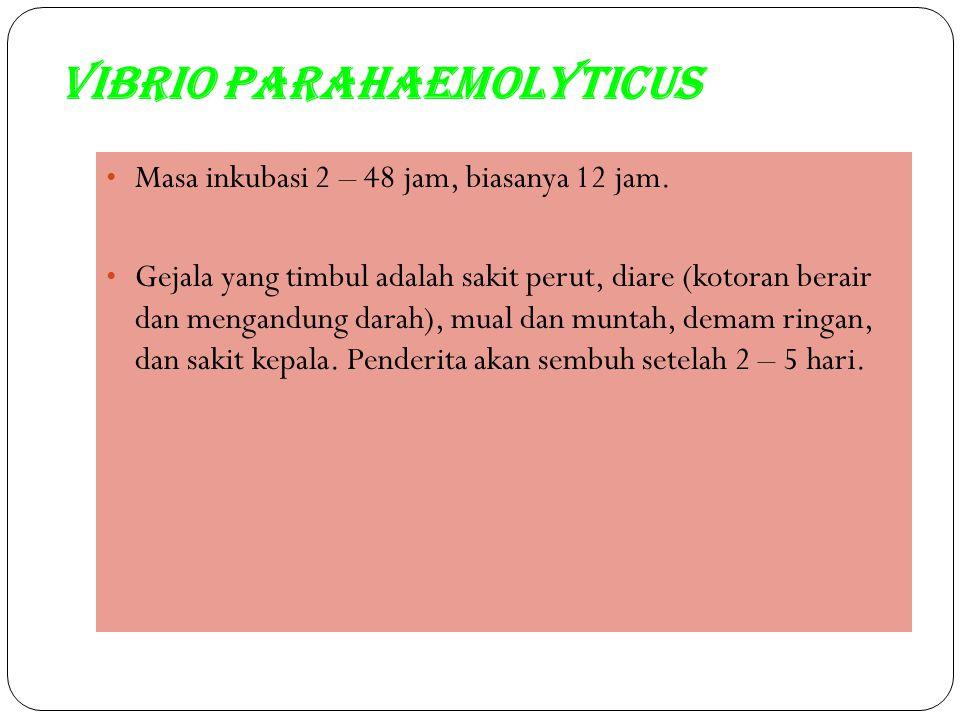 Vibrio parahaemolyticus Masa inkubasi 2 – 48 jam, biasanya 12 jam. Gejala yang timbul adalah sakit perut, diare (kotoran berair dan mengandung darah),