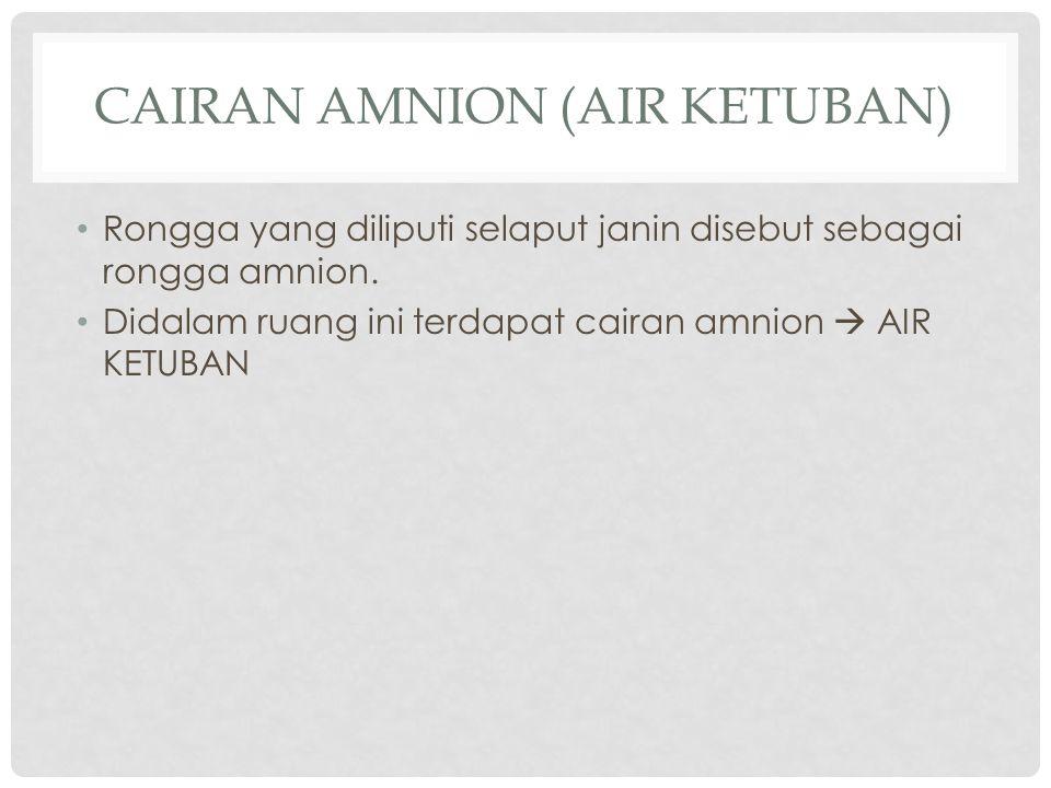 CAIRAN AMNION (AIR KETUBAN) Rongga yang diliputi selaput janin disebut sebagai rongga amnion. Didalam ruang ini terdapat cairan amnion  AIR KETUBAN