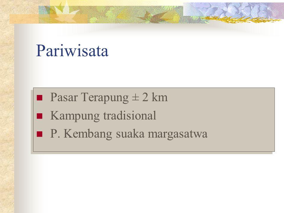 Pariwisata Pasar Terapung ± 2 km Kampung tradisional P. Kembang suaka margasatwa Pasar Terapung ± 2 km Kampung tradisional P. Kembang suaka margasatwa