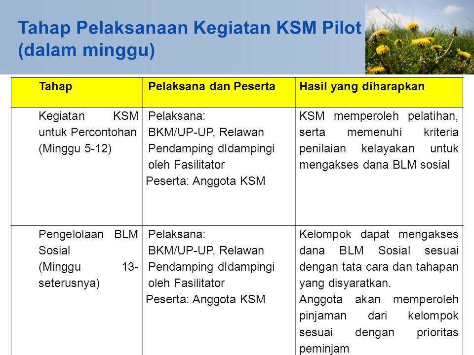 TahapPelaksana dan PesertaHasil yang diharapkan Kegiatan KSM untuk Percontohan (Minggu 5-12) Pelaksana: BKM/UP-UP, Relawan Pendamping dIdampingi oleh