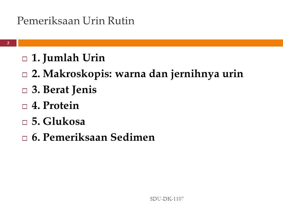 Pemeriksaan Urin Rutin SDU-DK-1107 2  1. Jumlah Urin  2. Makroskopis: warna dan jernihnya urin  3. Berat Jenis  4. Protein  5. Glukosa  6. Pemer