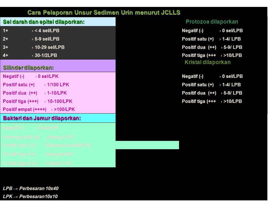 27 Cara Pelaporan Unsur Sedimen Urin menurut JCLLS Sel darah dan epitel dilaporkan: Protozoa dilaporkan 1+ → < 4 sel/LPB Negatif (-) → 0 sel/LPB 2+ →