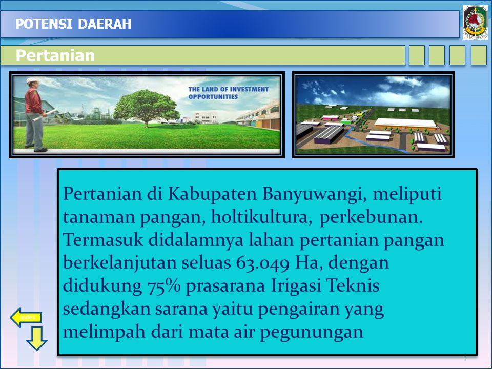POTENSI DAERAH 1 Pertanian di Kabupaten Banyuwangi, meliputi tanaman pangan, holtikultura, perkebunan. Termasuk didalamnya lahan pertanian pangan berk