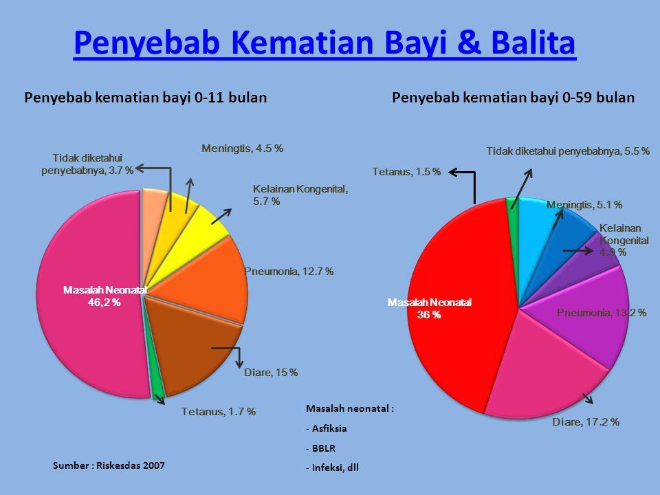 Penyebab kematian bayi 0-11 bulanPenyebab kematian bayi 0-59 bulan Sumber : Riskesdas 2007 Pneumonia, 12.7 % Diare, 15 % Masalah Neonatal 46,2 % Meningtis, 4.5 % Kelainan Kongenital, 5.7 % Tidak diketahui penyebabnya, 3.7 % Tetanus, 1.7 % Masalah Neonatal 36 % Diare, 17.2 % Pneumonia, 13.2 % Kelainan Kongenital 4.9 % Tidak diketahui penyebabnya, 5.5 % Meningtis, 5.1 % Tetanus, 1.5 % Masalah neonatal : - Asfiksia - BBLR - Infeksi, dll Penyebab Kematian Bayi & Balita