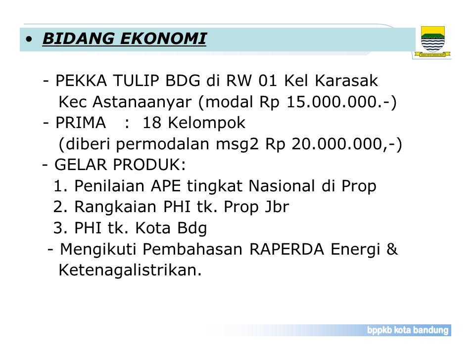 BIDANG EKONOMI - PEKKA TULIP BDG di RW 01 Kel Karasak Kec Astanaanyar (modal Rp 15.000.000.-) - PRIMA : 18 Kelompok (diberi permodalan msg2 Rp 20.000.000,-) - GELAR PRODUK: 1.