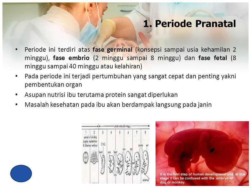 1. Periode Pranatal Periode ini terdiri atas fase germinal (konsepsi sampai usia kehamilan 2 minggu), fase embrio (2 minggu sampai 8 minggu) dan fase