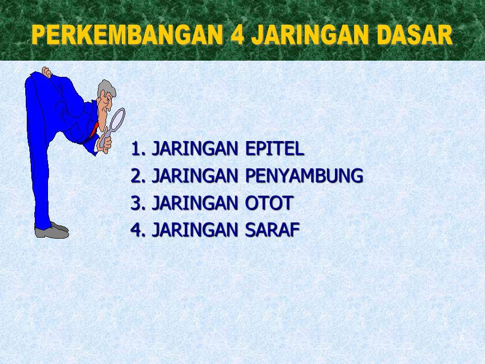 6 1. JARINGAN EPITEL 2. JARINGAN PENYAMBUNG 3. JARINGAN OTOT 4. JARINGAN SARAF