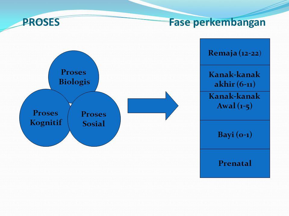 PROSES Fase perkembangan Proses Biologis Proses Kognitif Proses Sosial Remaja (12-22 ) Kanak-kanak akhir (6-11) Kanak-kanak Awal (1-5) Bayi (0-1) Pren
