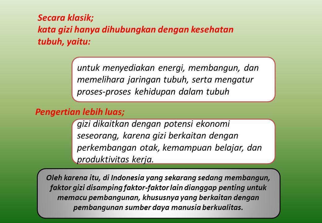 Oleh karena itu, di Indonesia yang sekarang sedang membangun, faktor gizi disamping faktor-faktor lain dianggap penting untuk memacu pembangunan, khususnya yang berkaitan dengan pembangunan sumber daya manusia berkualitas.