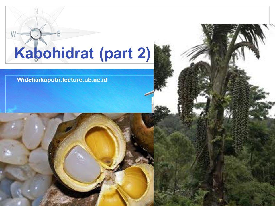 LOGO Kabohidrat (part 2) Wideliaikaputri.lecture.ub.ac.id