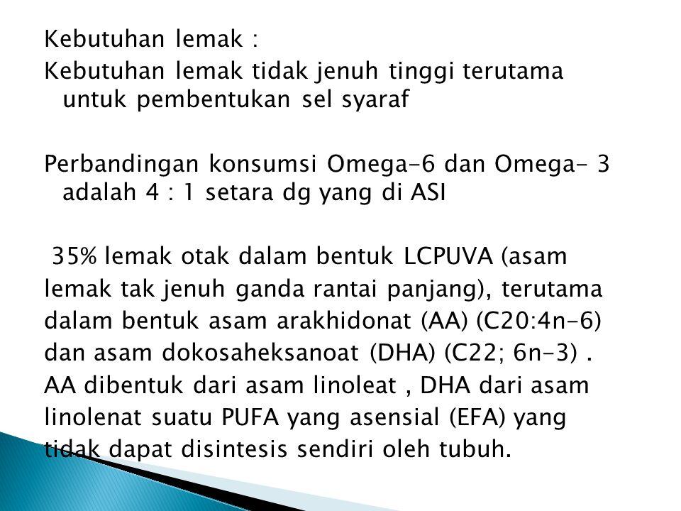 Kebutuhan lemak : Kebutuhan lemak tidak jenuh tinggi terutama untuk pembentukan sel syaraf Perbandingan konsumsi Omega-6 dan Omega- 3 adalah 4 : 1 set