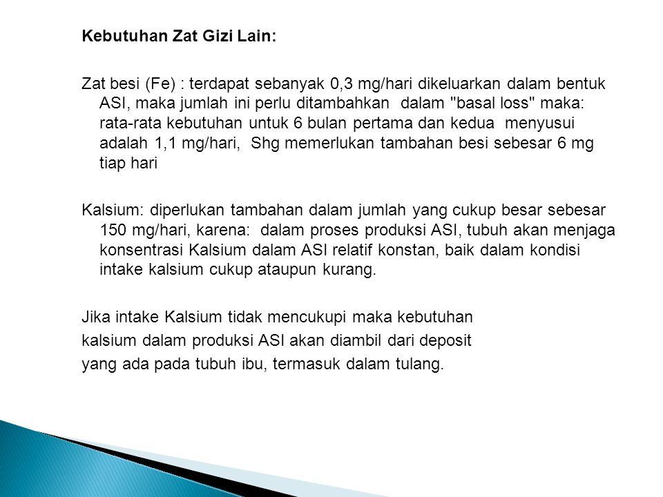 Kebutuhan Zat Gizi Lain: Zat besi (Fe) : terdapat sebanyak 0,3 mg/hari dikeluarkan dalam bentuk ASI, maka jumlah ini perlu ditambahkan dalam