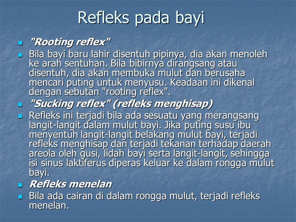Refleks pada bayi