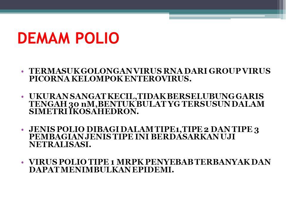 3 Virus Polio & Eradikasi Polio  Pemberantasan terhadap penyebab penyakit polio (virus polio liar), sehingga dunia bebas dari polio  Tidak ditemukan virus polio liar regional (minimal 3 tahun berturut-turut).