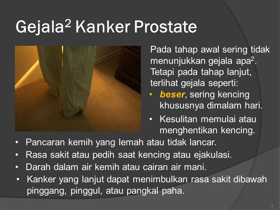 Gejala 2 Kanker Prostate Pada tahap awal sering tidak menunjukkan gejala apa 2.