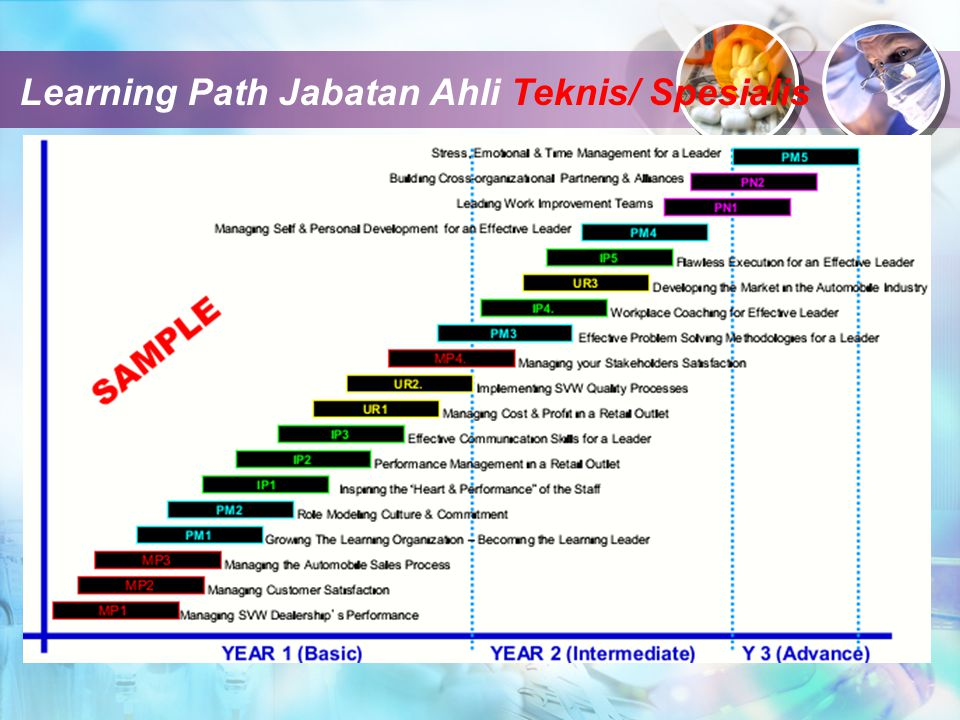 Learning Path Jabatan Ahli Teknis/ Spesialis