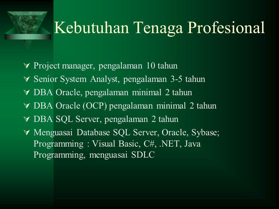 Kebutuhan Tenaga Profesional  Project manager, pengalaman 10 tahun  Senior System Analyst, pengalaman 3-5 tahun  DBA Oracle, pengalaman minimal 2 t