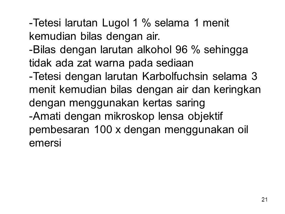 21 -Tetesi larutan Lugol 1 % selama 1 menit kemudian bilas dengan air. -Bilas dengan larutan alkohol 96 % sehingga tidak ada zat warna pada sediaan -T