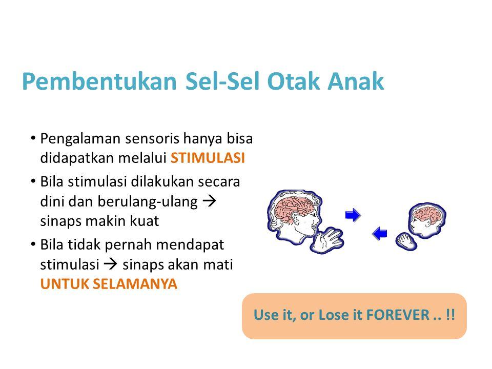 Use it, or Lose it FOREVER.. !! Pengalaman sensoris hanya bisa didapatkan melalui STIMULASI Bila stimulasi dilakukan secara dini dan berulang-ulang 